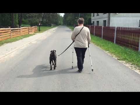 LUNA - nordic walking